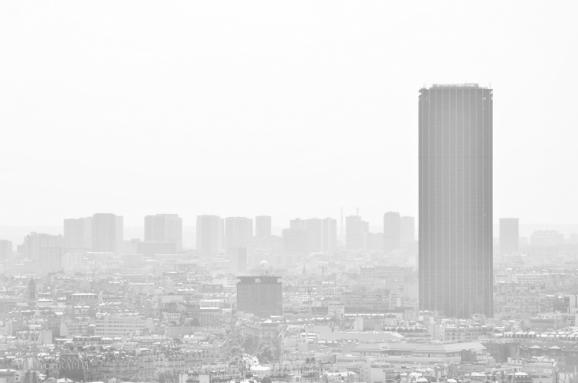 TALL PARIS